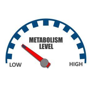 افزایش متابولیسم عطاری صادقی پور